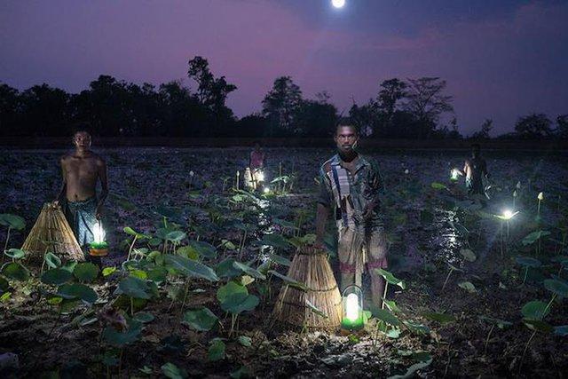 Diễn giả TEDx Talks - Nhiếp ảnh gia tài năng của National Geographic sẽ đến Việt Nam - Ảnh 2.